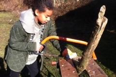 Raelle-Bow-saw